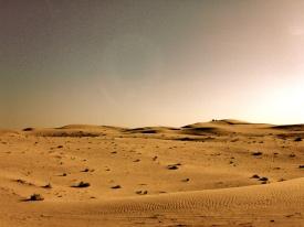 désert 61